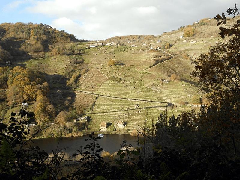 Ruta Codos de Belesar en Chantada